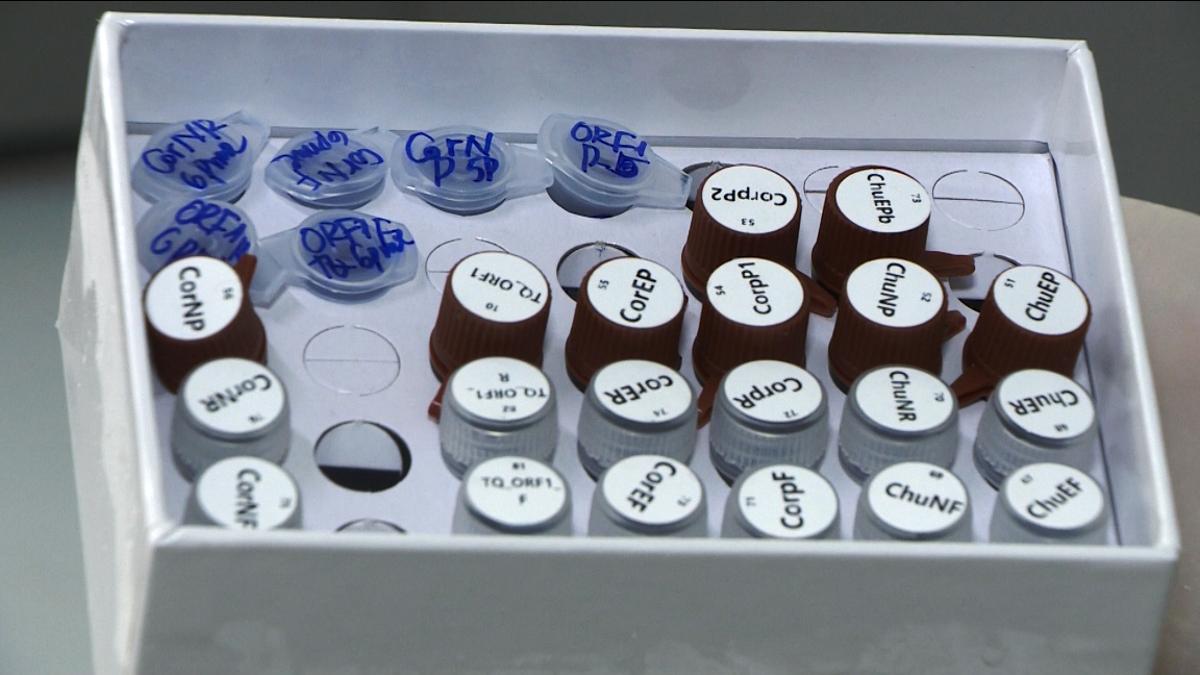 Viện Công nghệ sinh học, Viện HLKH&CN VN chế tạo thành công bộ KIT chẩn đoán Virus SARS-COV-2