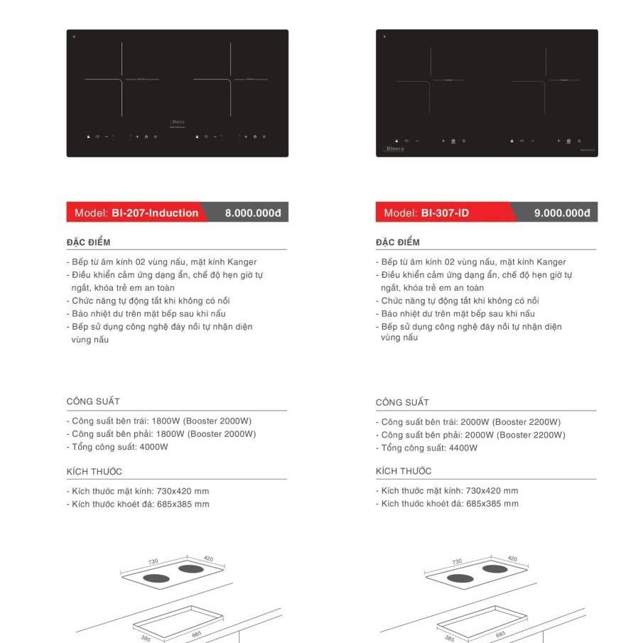 Bếp điện từ model: BI-207- Induction và BI-307-ID