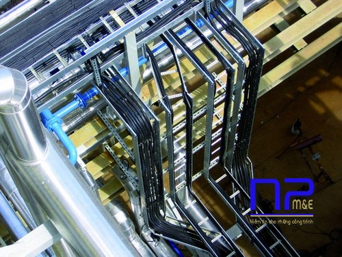 Công trình thang cáp 200x100 của NP Việt Nam
