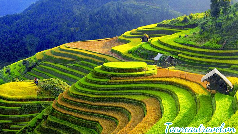 TC01309 | CHINH PHỤC VÒNG CUNG TÂY BẮC