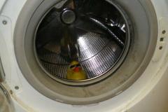 Sửa máy giặt Electrolux tại phố Hồng hà bảo hành Máy giặt 1 năm